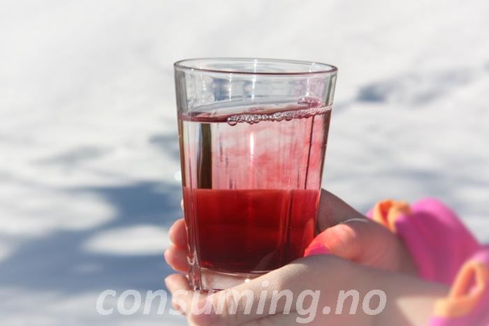 Teisseire Saft eple og solbær i glass