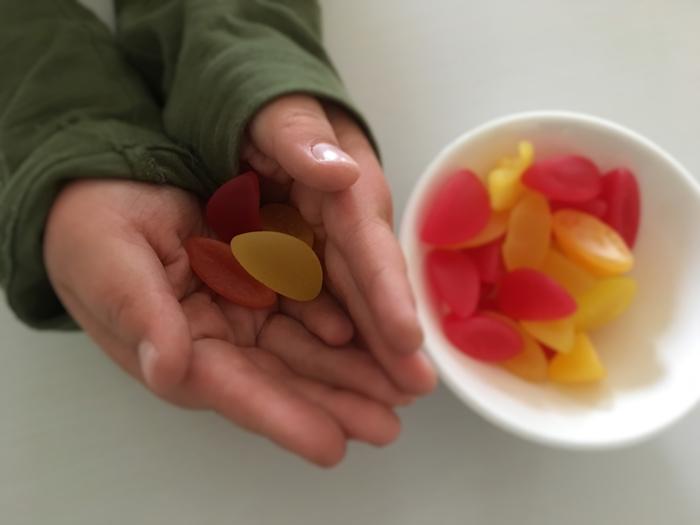 fruktbater-og-sander